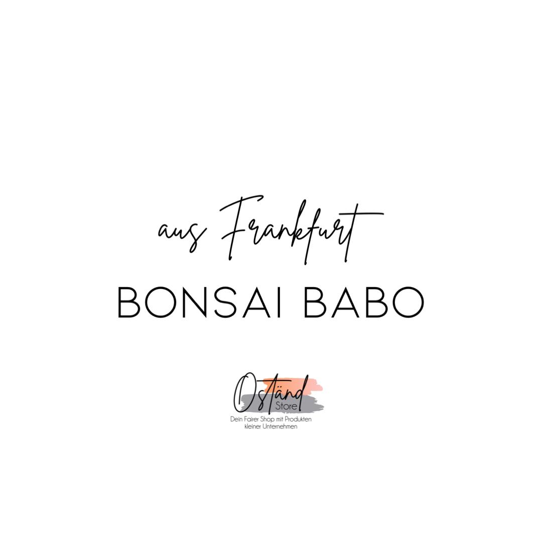 Bonsai Babo