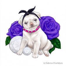 Pug & Roses
