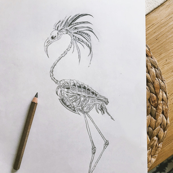 Flamingo with Hairstyle