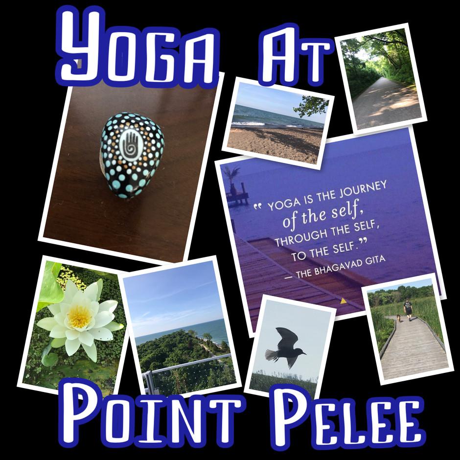 Mini Yoga Retreat!