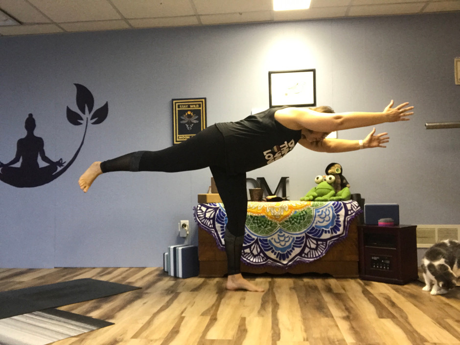 Zoom Yoga with Jan April 12-18, 2021 Schedule