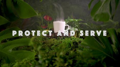 Rainforest Landscape With Copy.mp4