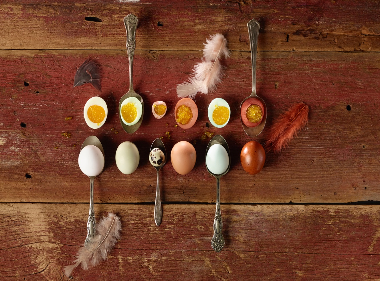 Eggs overhead