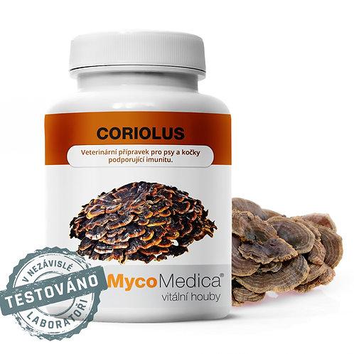 Coriolus v optimální koncentraci | MycoMedica