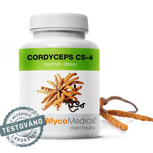 Cordyceps CS-4 v optimální koncentraci | MycoMedica