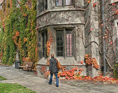 Student walking on college campus with ivy covered building in the fall