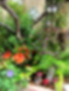 garden-spring.jpg