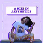 Carousel_Aesthetics Trends-1.jpg