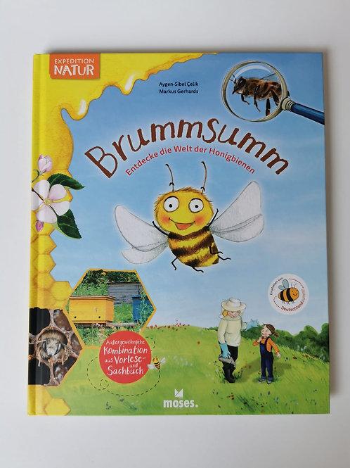 """Bilder-/ Sachbuch """"Brumm Summ Entdecke die Welt der Honigbienen"""""""