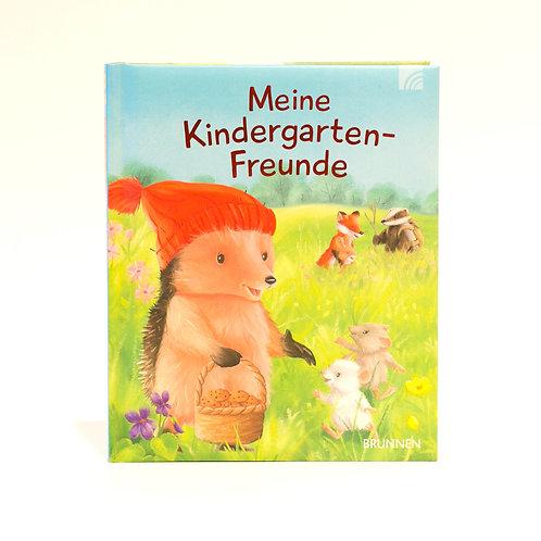 Meine Kindergarten- Freunde Buch Kleiner Igel