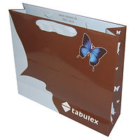 ribbon handle luxur shopping bags with full color printing