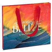 ribbon handle laminated paper bag with full color custom printing