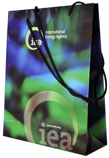 custom printed laminated paper bags with rope handle