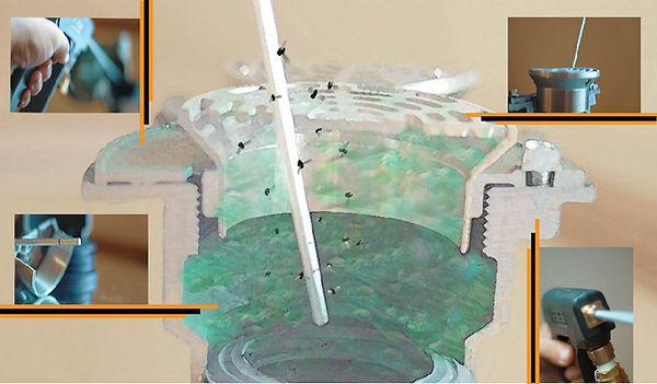 drainpg3grossflyLIGHT.jpg