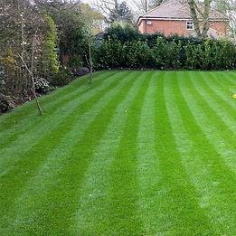 New Turfed Lawn