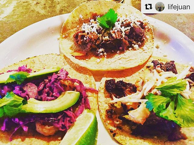 Taco Fest _greentruckpub featuring _mitlatortilleria corn tortillas! with _repostapp_・・・_Some amazin