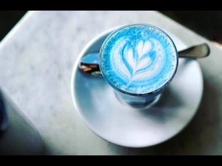 Hướng dẫn cách pha chế Latte Hoa Đậu Biếc cực kỳ dễ dàng