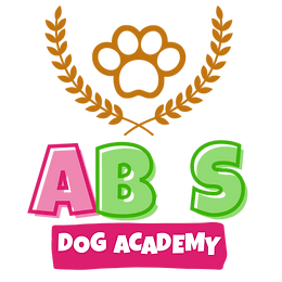 AB&S Academy (1).png