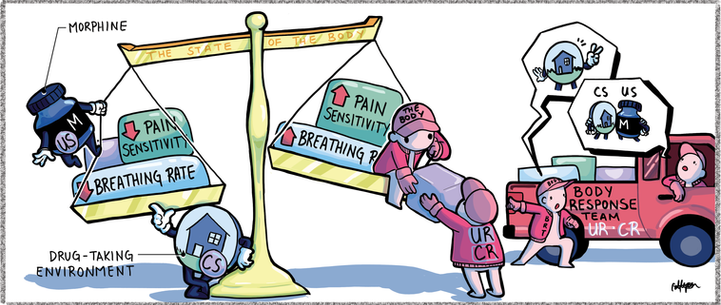 Homeostatic Response to Morphine