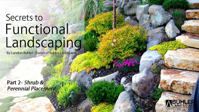 Secrets to Functional Landscaping Part 2: Shrub and Perennial Placement