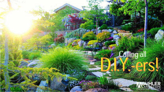 Get a Professional Landscape at a fraction of the cost!