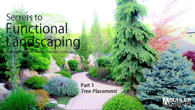Secrets to Functional Landscaping- Part 1 Tree Placement