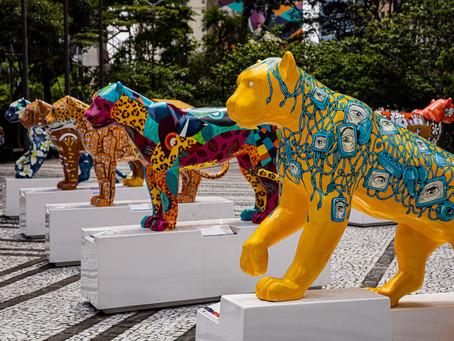 Jaguar Parede BH 2021 chega a BH após o grande sucesso em São Paulo