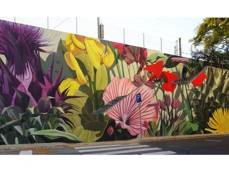 Muralista brasileiro brilha em Lisboa com Mural exaltando A Flora Local