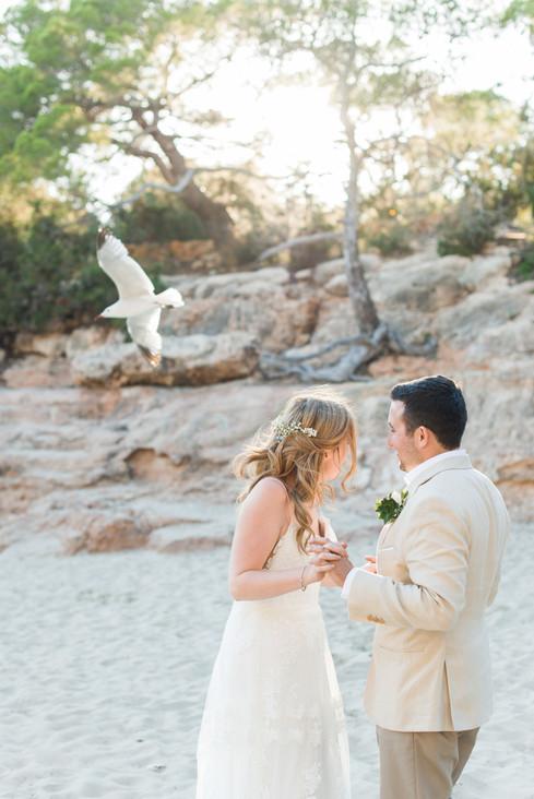 Lottie&Steve_wedding-959.jpg