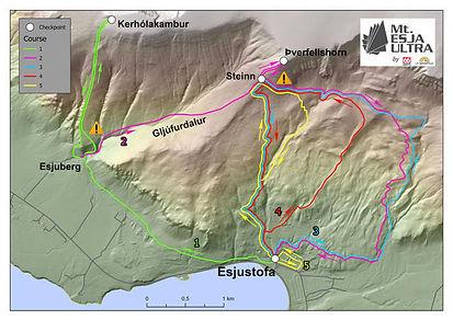 Mt Esja Marathon 2021.jpeg
