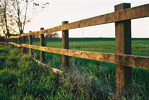 Farm_fence_in_Watlington.jpg