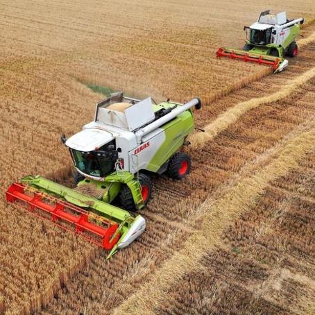 """""""Central Plains Granary"""" da China inaugurou a temporada de verão de colheita de grãos de trigo."""