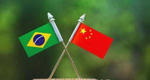 Em 2020 a participação da China nas exportações do agro foi recorde