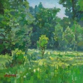 Rural Lakefield
