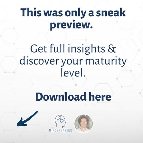 Maturity Model - download full model. (1).png