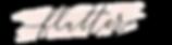 Flutter swish logo revised.png