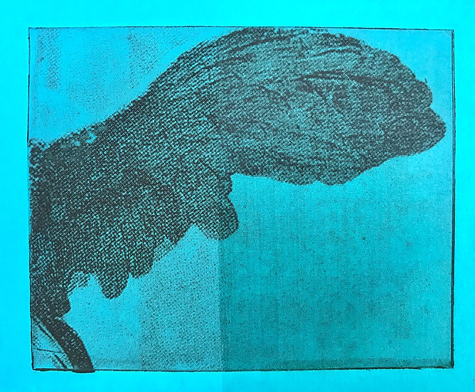 Solar Plate Photo Etching - 9/25/21