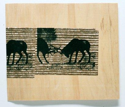 Elk with Lines