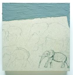 Elephant :10 – 5:00