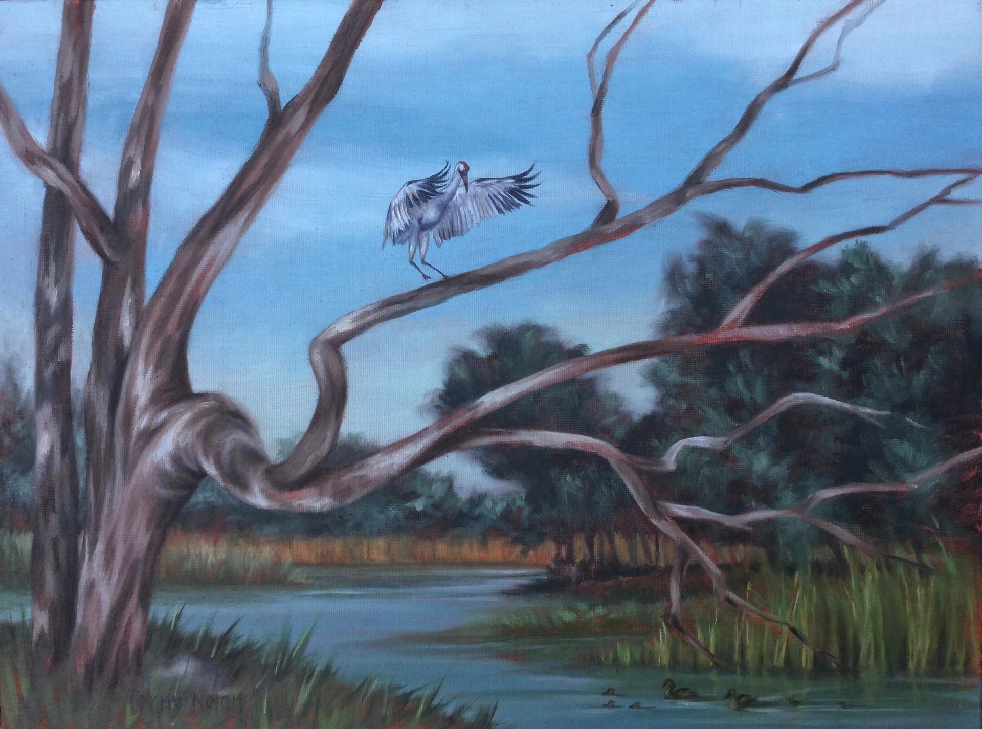 Ducking Under a Crane