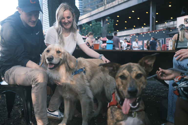 Dog Days of Summer - Yappy Hour