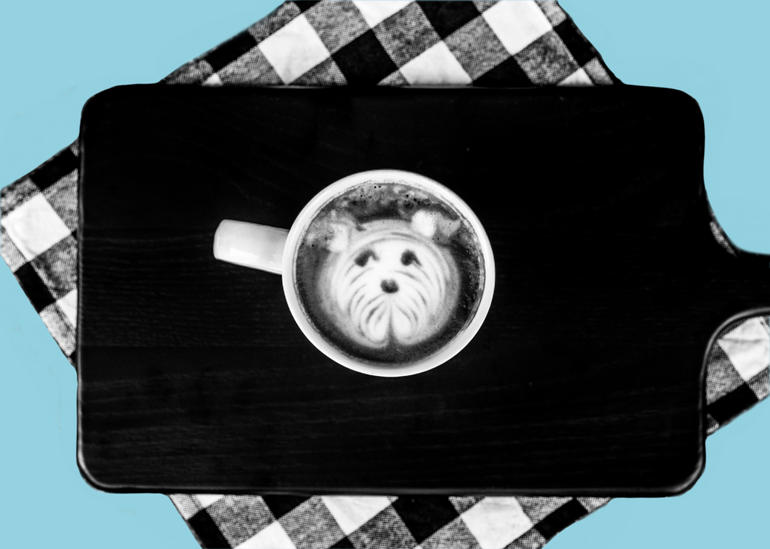 Dog Days of Summer - Dog Cafe