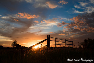 My favourite time of the day - Yamala, Central Queensland