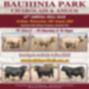 2020 Bauhinia Park Bull Sale - Catalogue