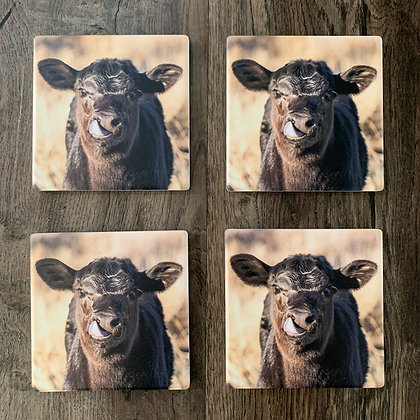 Ceramic Coasters - Cheeky