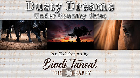 Dusty-Dreams-under-Country-Skies-FINAL-c
