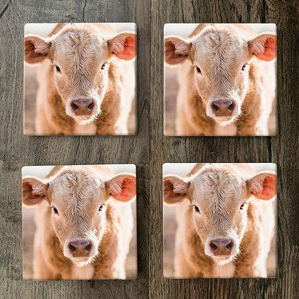 Ceramic Coasters - Cutie Pie