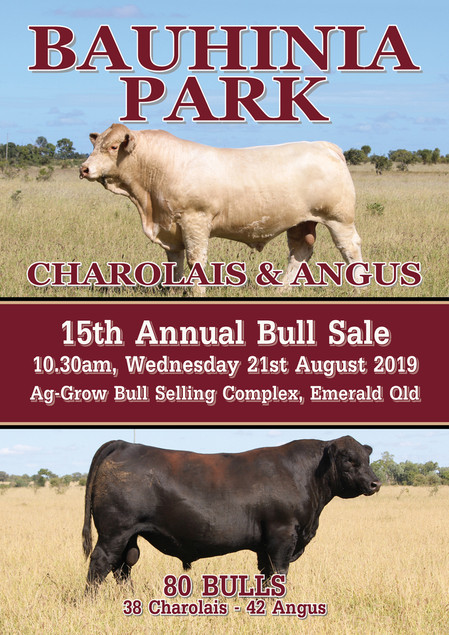 2019 Bull Sale Catalogue