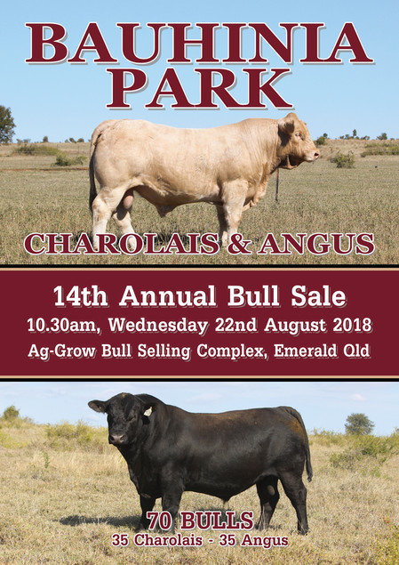 2018 Bull Sale Catalogue