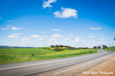 On the road from Adelaide to the Barossa Valley, South Australia